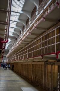 Alcatraz_0315-13